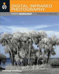 Infrared Photography | PUSTAKA FOTOGRAFI